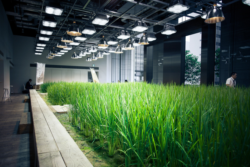 3_urban farm offices