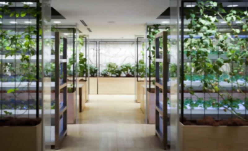 7_urban farm offices