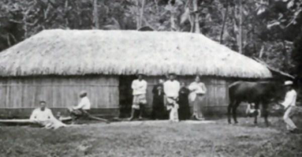 Diseños de casas de bamboo