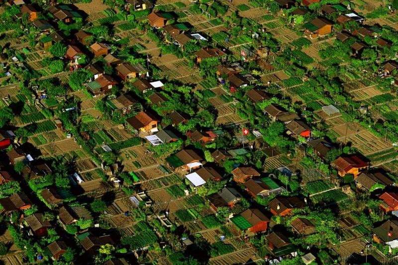 Conoce la ciudad donde cada habitante tiene su propio huerto