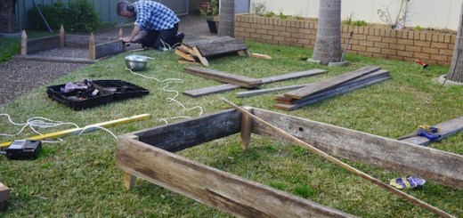 garden beds 19