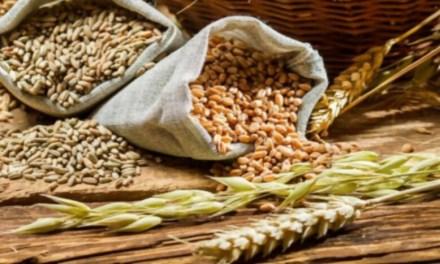 Por qué debes incluir granos integrales en tu alimentación