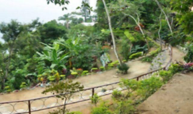 Parque-Ecológico-do-Vidigal-fotos-Mariana-Reis-post-2