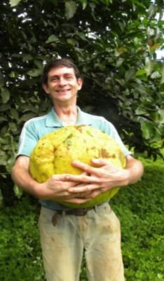 http://www.yalosabes.com/images/frutas-raras-03-600x1029.jpg