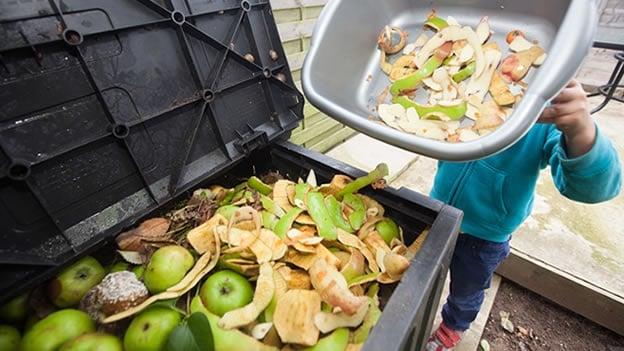 Composteras y Vermicomposteras Domésticas