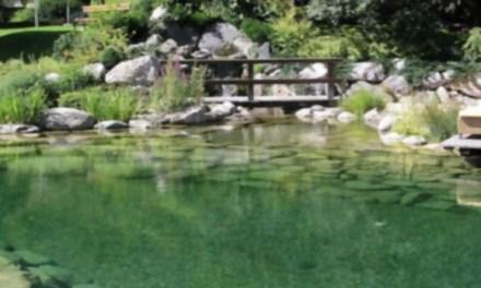 La primera piscina pública de Estados Unidos totalmente libre de cloro ¡Quiero una en mi ciudad!
