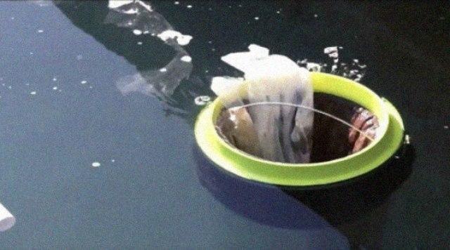 Una simple papelera flotante podría ser la solución para limpiar y salvar los océanos