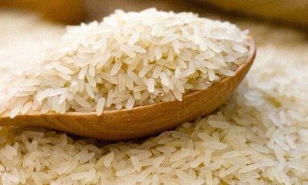 Una cooperativa logro convertir a Brasil en el mayor productor de arroz orgánico de Sudamérica