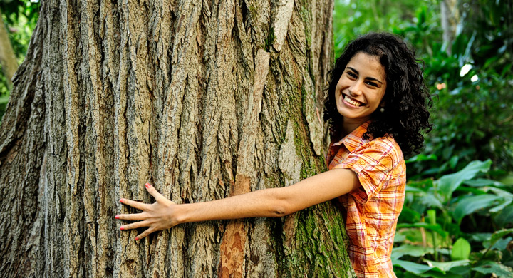 Los beneficios de abrazar árboles