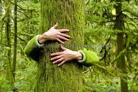 , Los beneficios de abrazar árboles han sido oficialmente validados por la ciencia