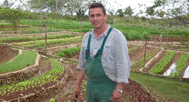 Descubre cómo un agrónomo dejó la teoría y logró una de las tierras más productivas