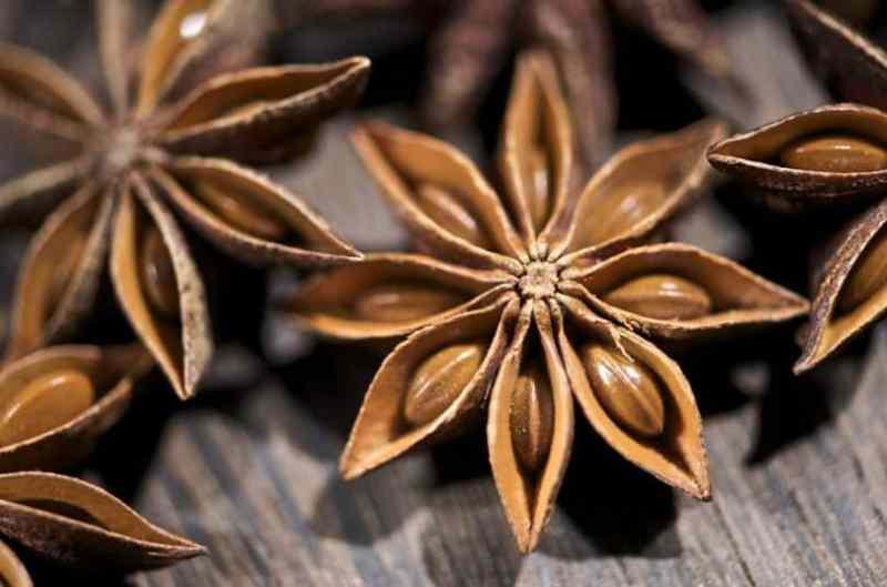 Beneficios del té de anís estrellado, Té de anís estrellado: beneficios, usos y propiedades