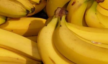 Como hacer abono orgánico de cáscaras de banana