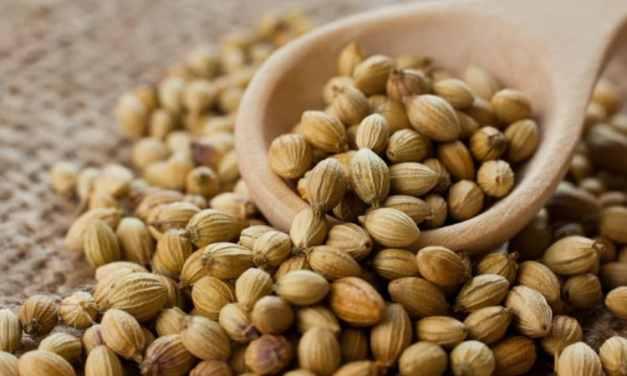 11 Beneficios, usos y propiedades del cilantro