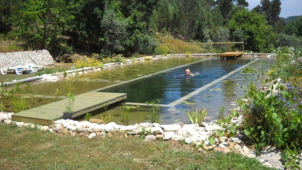 Como hacer una piscina natural o Bio-Piscina que sustituye cloro por plantas