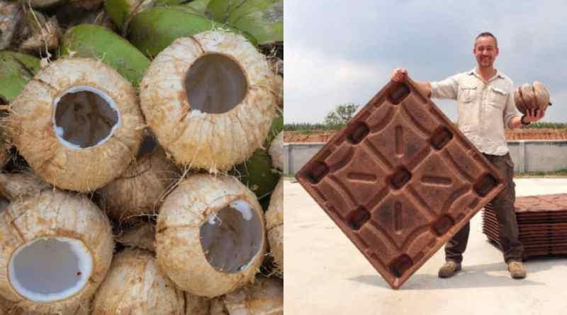 , Pallets hechos de cáscaras de coco salvan 200 millones de árboles al año