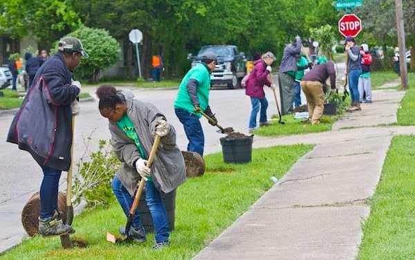 Dallas planta árboles en caminos de estudiantes para reducir las islas de calor