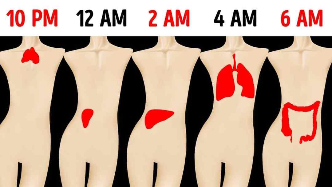 ¿Te despiertas a la misma hora cada noche? Esto es lo que significa