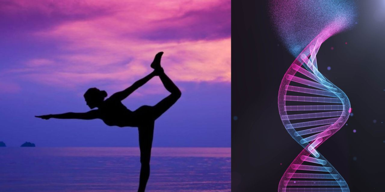 Practicar yoga, meditación o Tai Chi revierte los efectos del estrés sobre el ADN