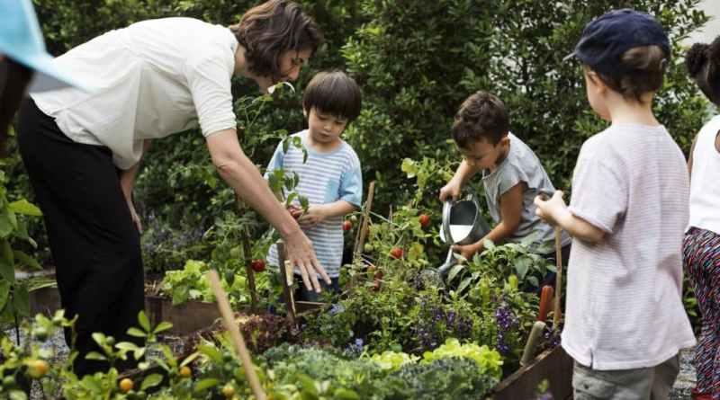 , Georgia introducirá la enseñanza de la agricultura en la educación básica