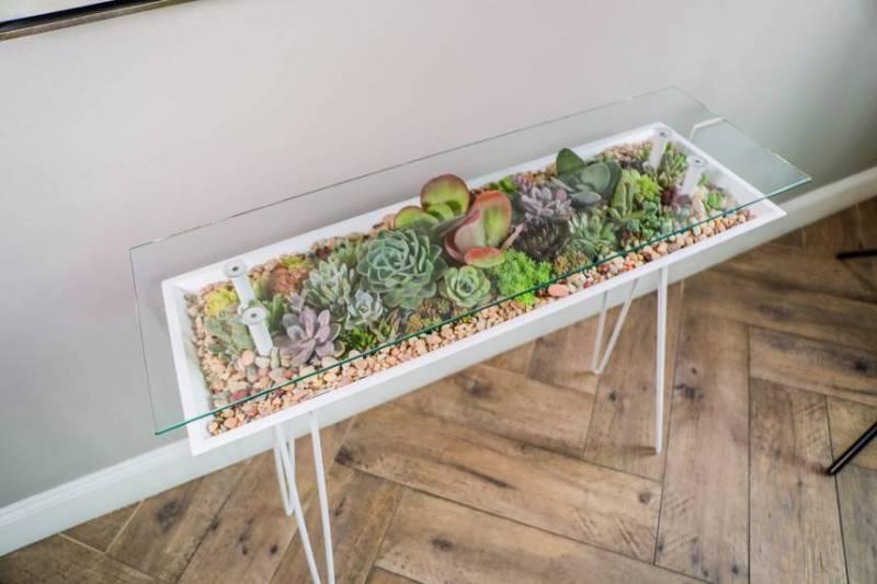 Esta mesa terrario le permite llenar muebles con plantas de interior