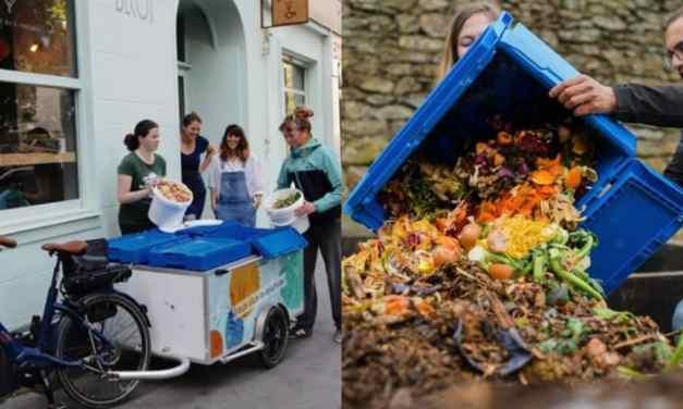 Joven recoge desechos orgánicos para hacer compost