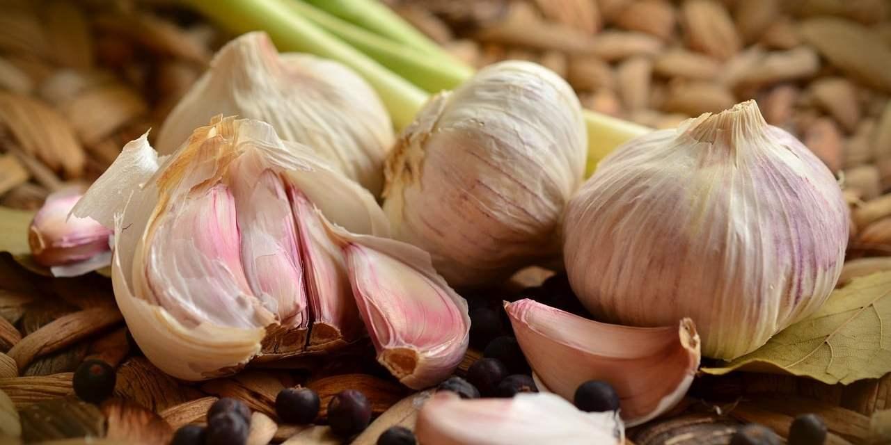 Aceite de ajo, un poderoso antibiótico natural seguro para niños