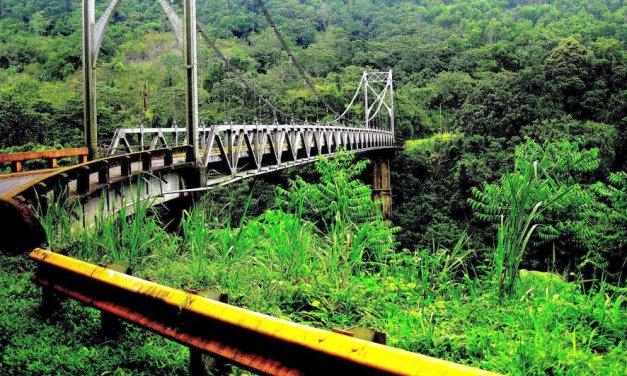 Costa Rica es el primer país tropical en revertir la deforestación