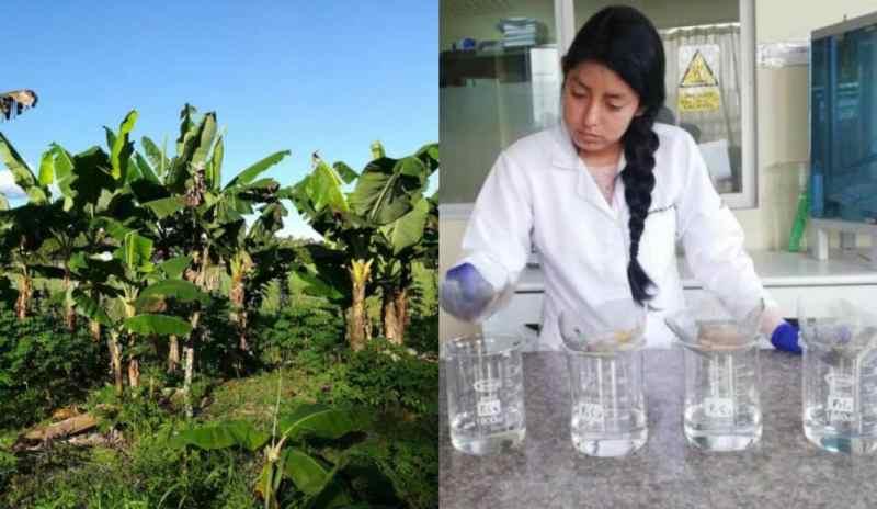 Joven Ecuatoriana logra filtrar y purificar agua con restos de Plátano