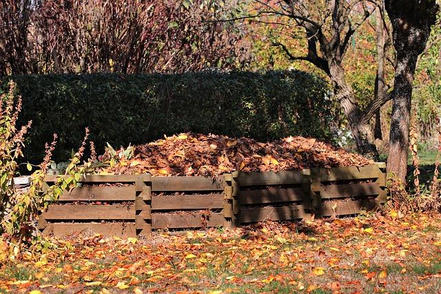 compost photo