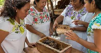 Las mujeres mayas protegen a las abejas de la extinción