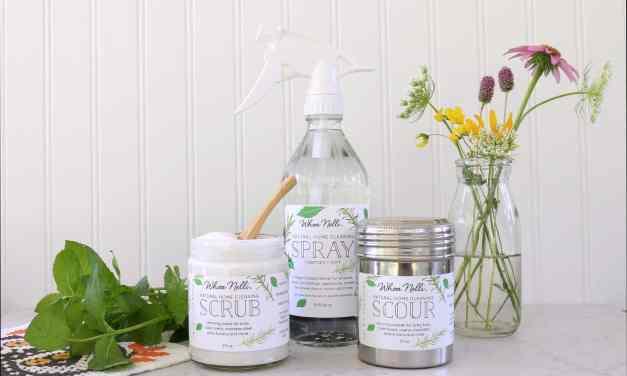 Los productos de limpieza naturales cuidan el medio ambiente y también el bolsillo