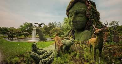 Hermosas esculturas hechas con plantas vivas