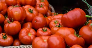 Tomate: beneficios y propiedades medicinales
