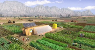 Este contenedor trae todo lo necesario para montar una granja y alimentar a 150 personas