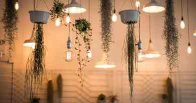 La Verdad acerca de las Lámparas de Bajo Consumo