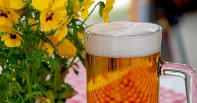 Así es como la cerveza se utiliza para generar energía verde