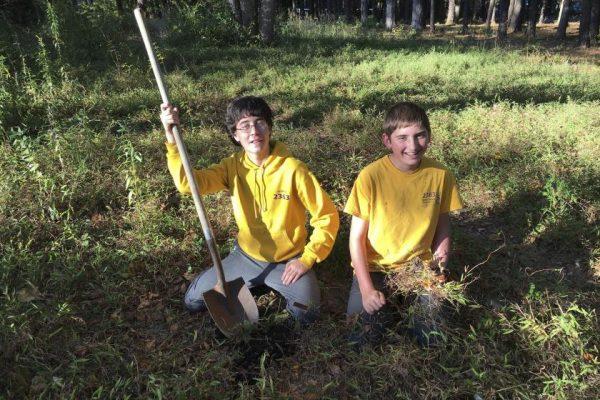 Dos adolescentes reconstruyen 20 km de jardines para salvar a las abejas y crean un proyecto medioambiental (EE. UU.)