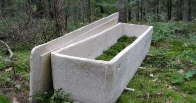 Se realizó el primer funeral con 'ataúd viviente' hecho de fibra de hongos