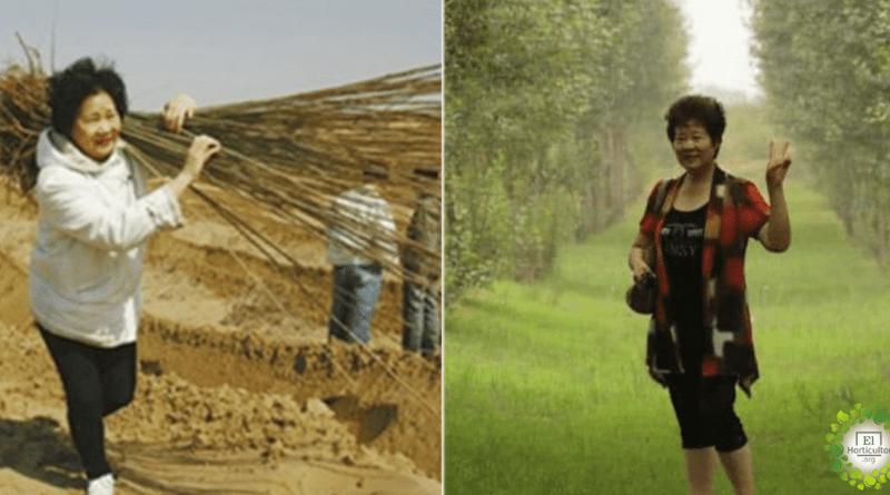 , Mamá planta 2 millones de árboles en el desierto para cumplir el último deseo de su hijo