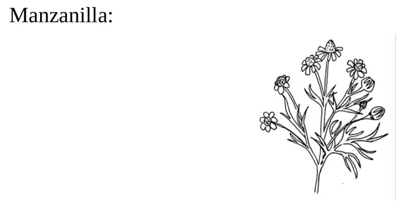 , Manual completo (A-Z) de Elaboración de Plaguicidas o Insecticidas Naturales y orgánicos