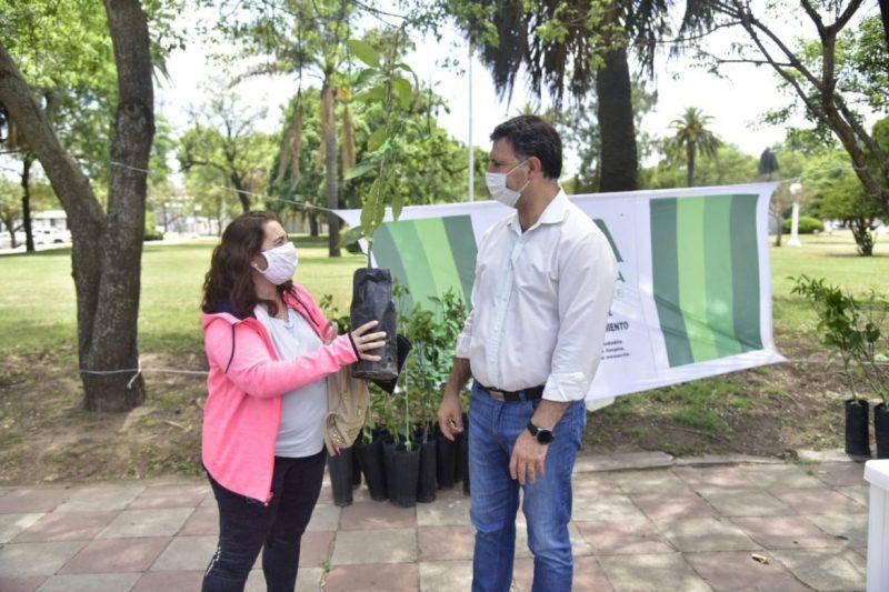 , En Córdoba regalan árboles frutales para llenar la ciudad de alimento