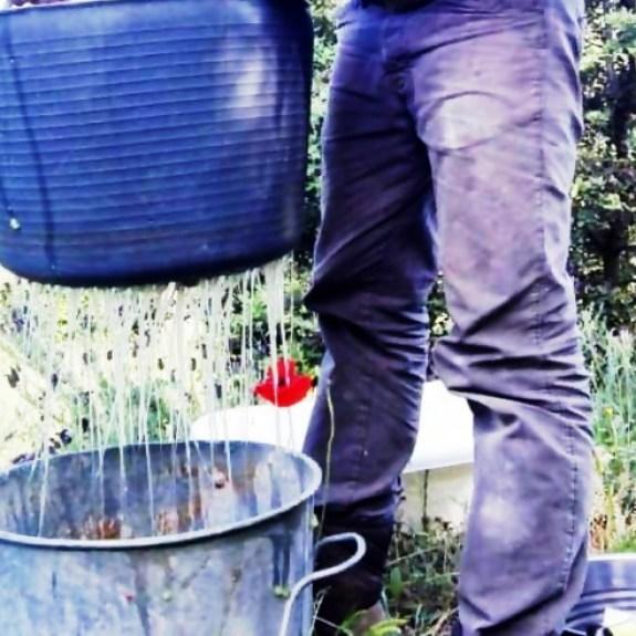 Cómo impermeabilizar paredes de barro con cactus o nopal