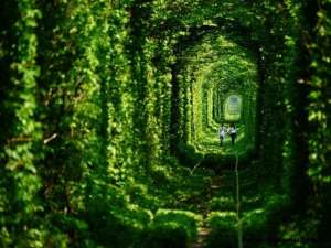aband-Abandoned-Tunnel-of-Love-in-Ukraine