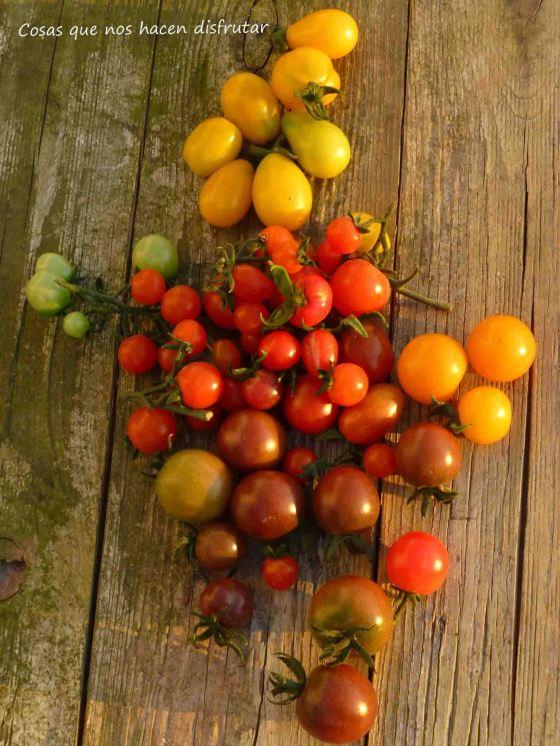 Tomates de herencia con sabor