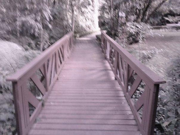 bridge_by_lionelc-d68wox8