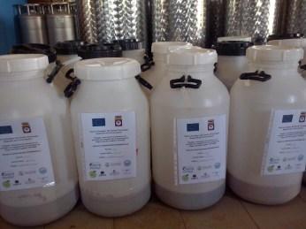 Fermentazione dei vini base