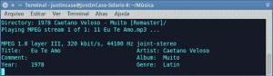 execução de arquivo de áudio mp3 com o o mpg123