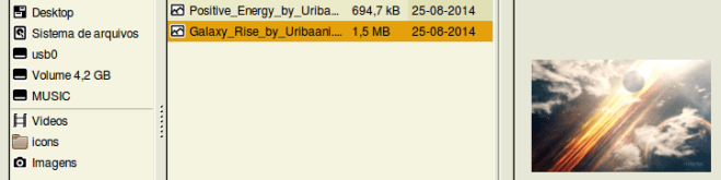 Captura de tela parcial do gerenciador de arquivos no sistema operacional Debian Jessie