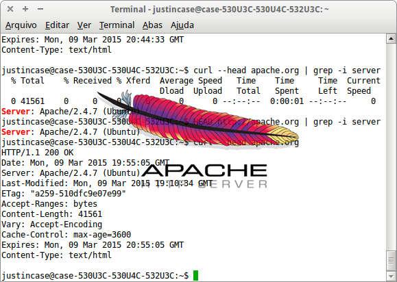 Captur de tela da execução do comando HEAD.